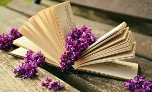 Wakacje z niestarzejącymi się książkami