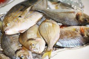 Mrożone oszustwo? Ile jest ryby w rybie?