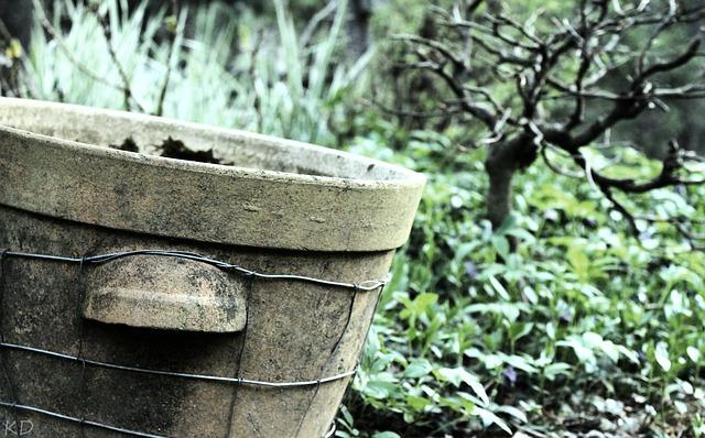 Dodatek w ogrodzie – betonowe donice