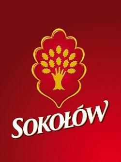 logosokolow.ai