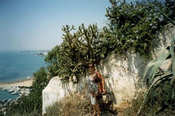 Port El Kantanoui. Na zdjęciu widać piękny kaktus, niestety nie kwitnie