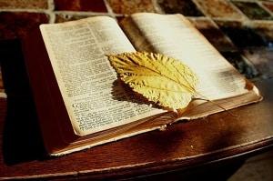 7 grzechów głównych przeciw własnemu zdrowiu i życiu