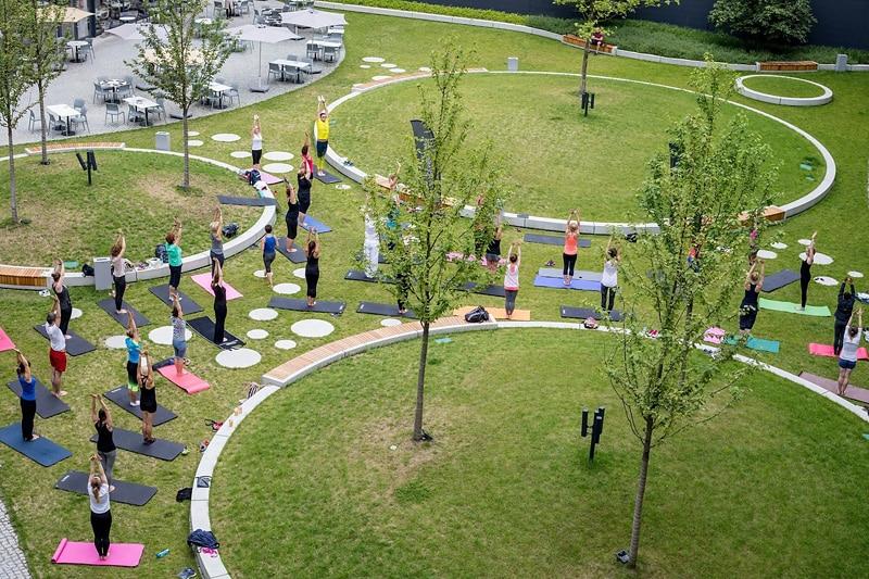 Sportowy piknik w OVO