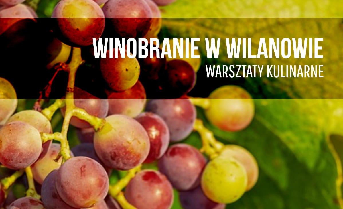 Winobranie w Wilanowie – warsztaty kulinarne