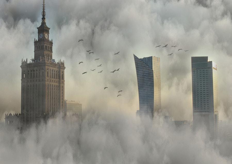 Ochrona przed smogiem – to warto wiedzieć