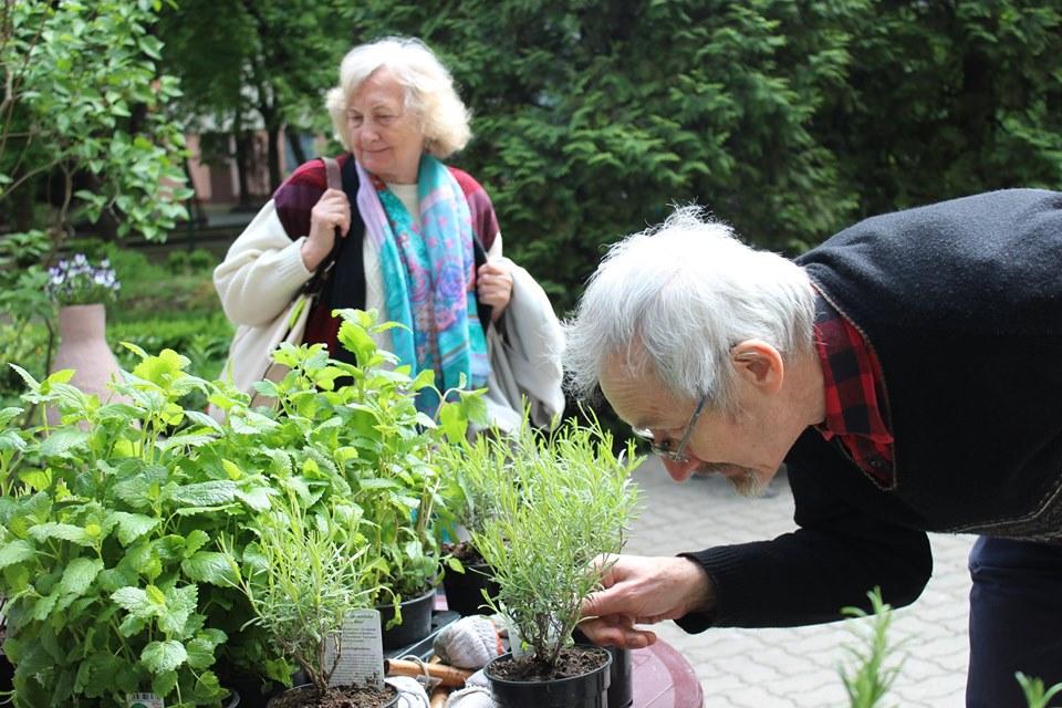 Projekt Floratorium, aby czerpać siłę z przyrody