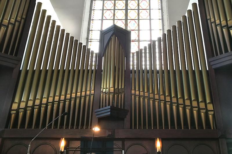 Muzykujący profesorowie na festiwalu organowym