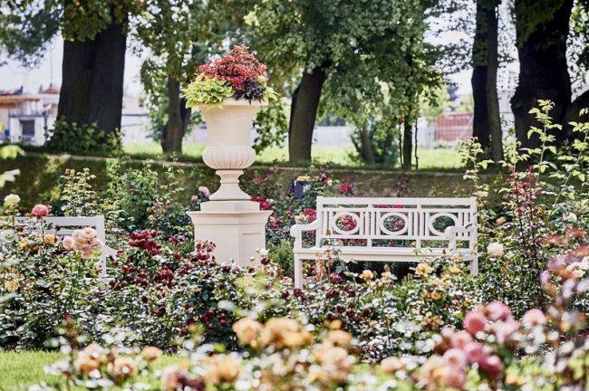 Pałac Mała Wieś, ogród różany