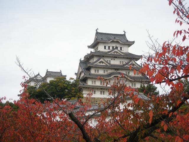W Japonii przybywa seniorów