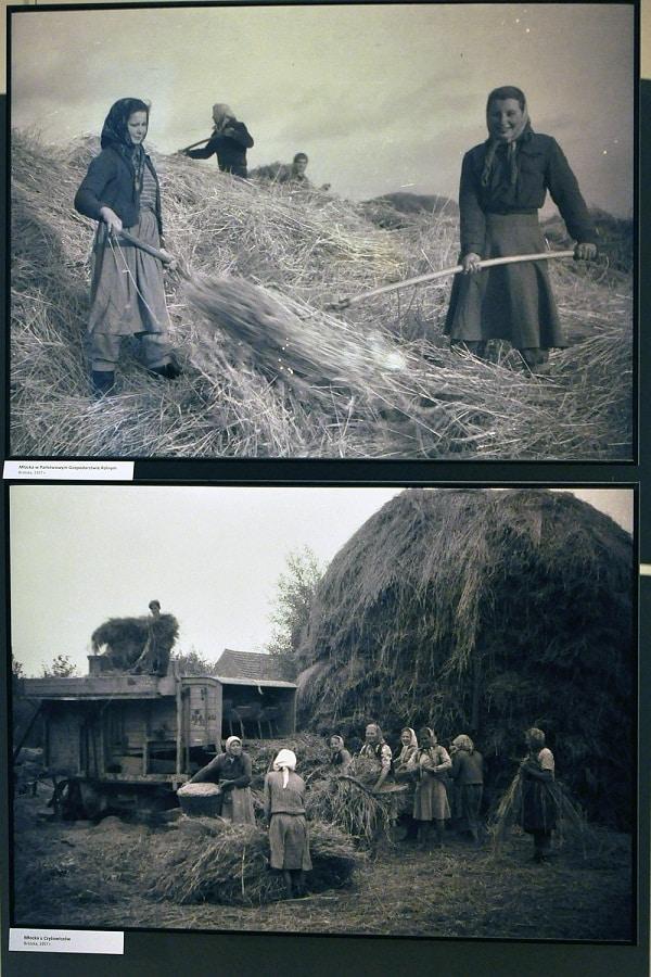 fotografie z Brzózki w Muzeum Etnograficznym