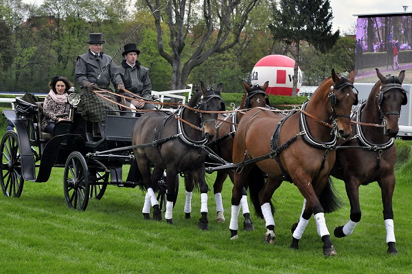 Rozpoczęcie sezonu wyścigów konnych na Partynicach