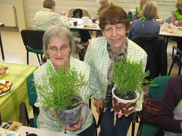 seniorzy na zajęciach ogrodnicznych