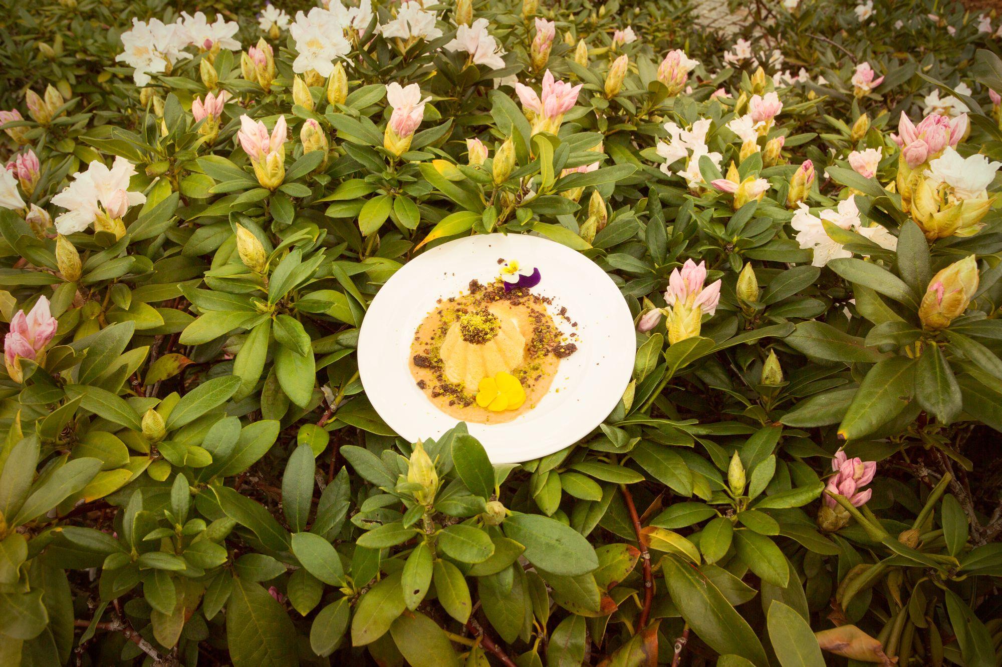 Śniadanie u króla (fot_Marcin_Mastykarz)