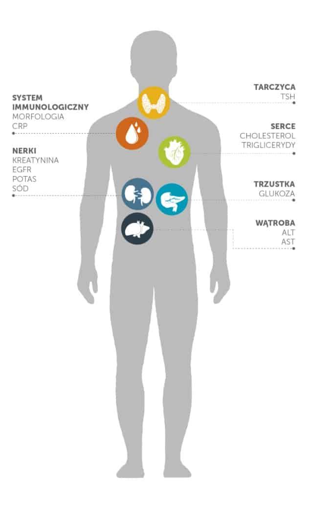 Badania laboratoryjne - profilaktyka ratuje życie
