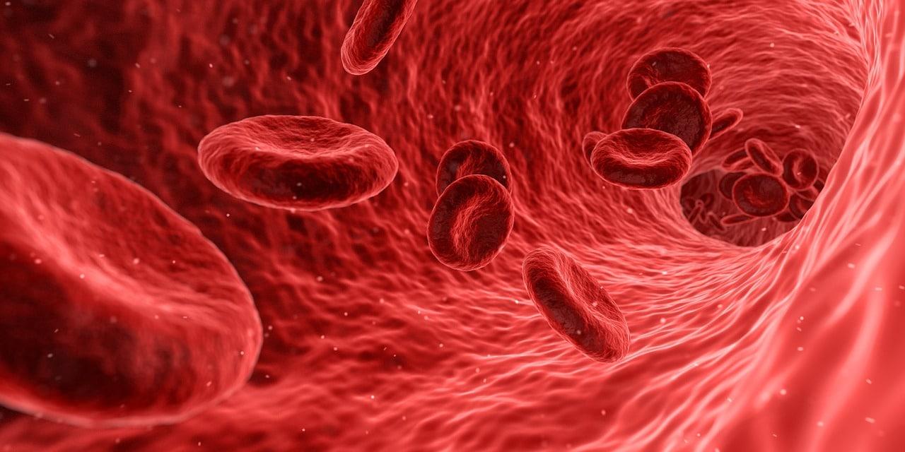 Tarczyca i prostata – jakie badania należy wykonać?