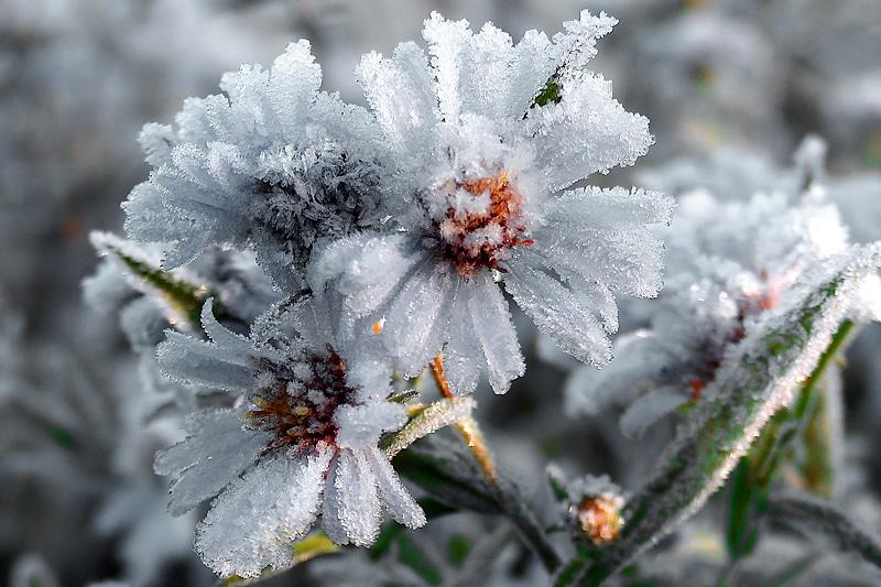 Zima jest ładna