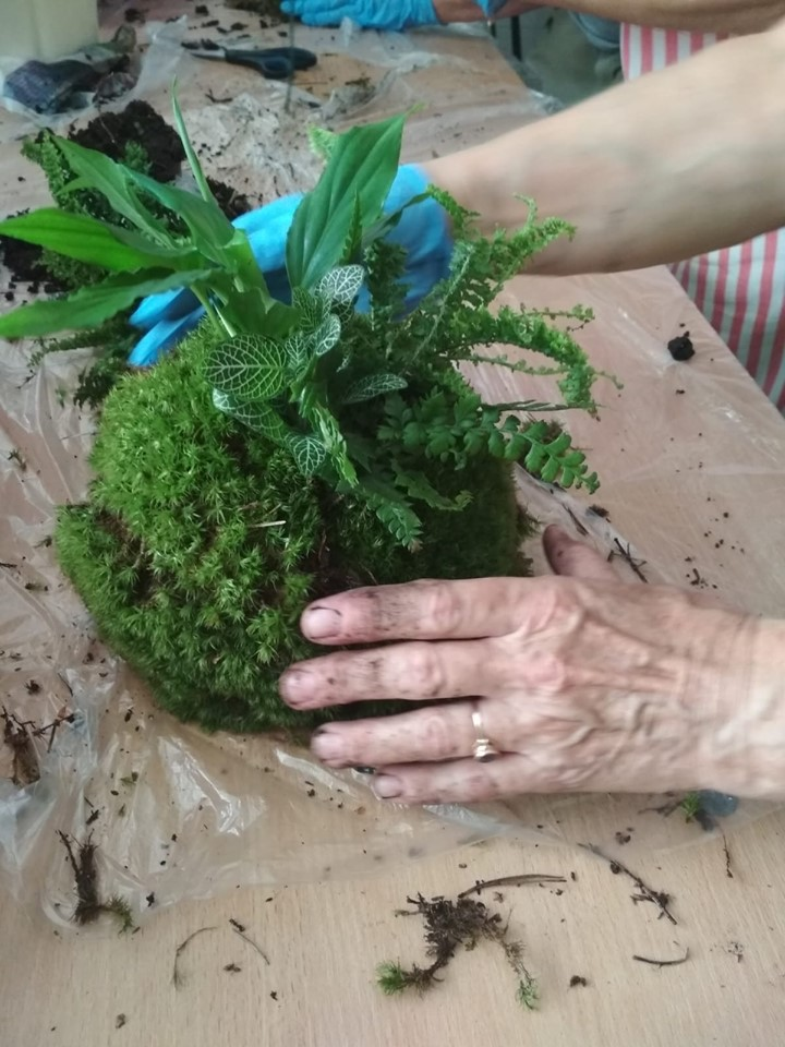 Projekt Floratorium