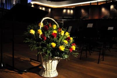 Orkiestra Leopoldinum