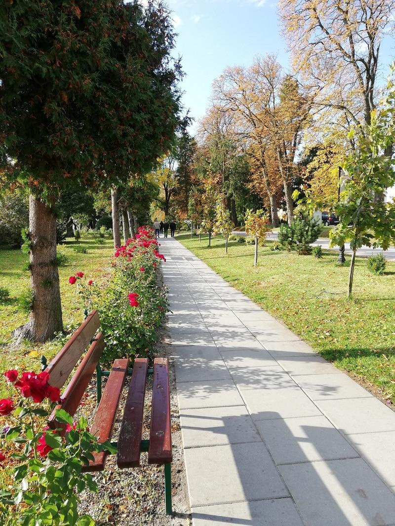 Uzdrowisko Solec-Zdrój Park